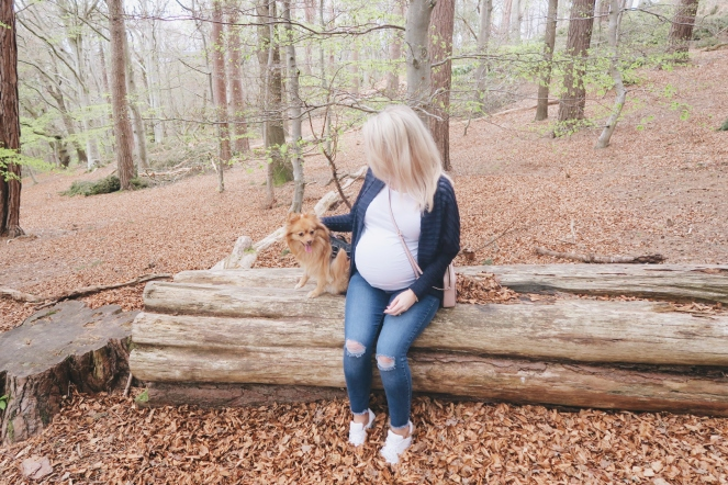 third-trimester-pregnancy-blog-vlog-love-your-pregnancy